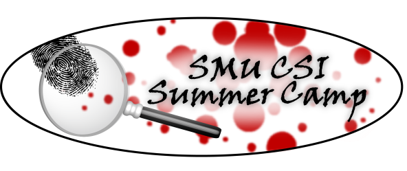 Logo_CSI Summer Camp