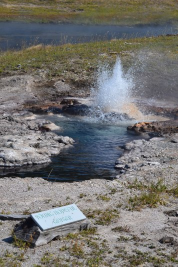 The Young Hopeful geyser